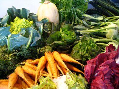 24866-de-groentetuin-in-de-winter